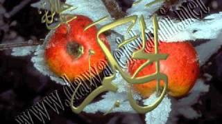 HAQ HUSSAIN MOLA HUSSAIN.wmv