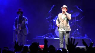 The Dualers - Everything I Own