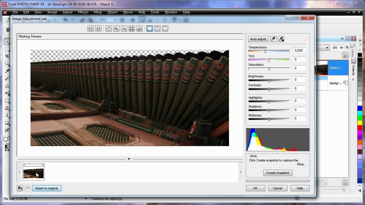 CorelDRAW Graphics Suite X5 2010 Free Download