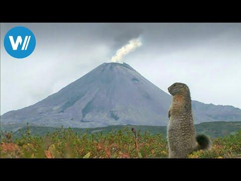 Kamtschatka, kochende Erde