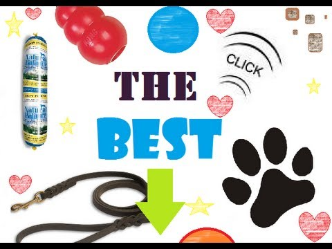 Toys, Treats & Equipment TRAINER Recommended - Kong, Clickers, Toys And More