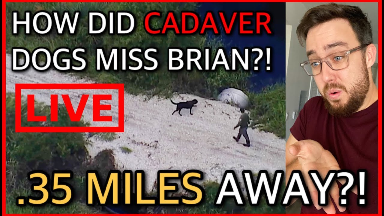 Download Let's Talk About the Cadaver Dogs! - Brian Laundrie Found RIGHT NEXT To Where They Searched