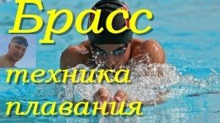 Брасс - Техника плавания| Практика| КАК НАУЧИТЬСЯ ПРАВИЛЬНО ПЛАВАТЬ| How to learn to swim|