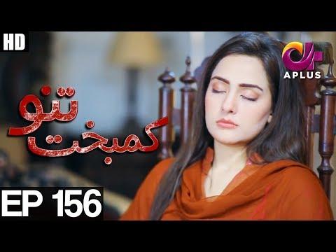 Kambakht Tanno - Episode 156  Full HD - A Plus ᴴᴰ Drama