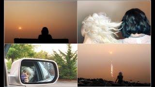 New Haircuts & Bellingham Bay Sunset