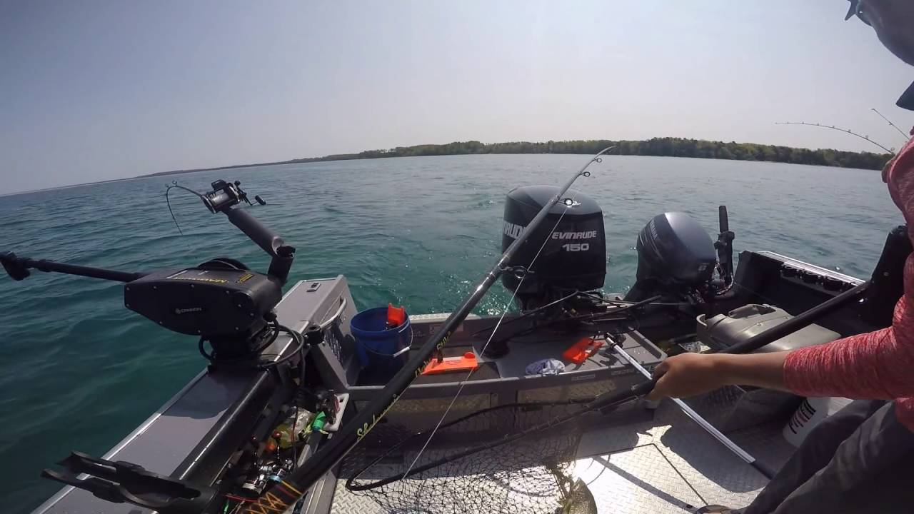 Traverse city lake trout fishing youtube for Cisco s sportfishing fish count