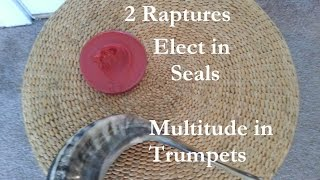 2 Raptures, Elect in Seals, Multitude in Trumpets