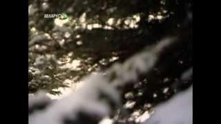Все путем - Мы едем в край голубых озер [2](, 2013-01-10T17:13:02.000Z)