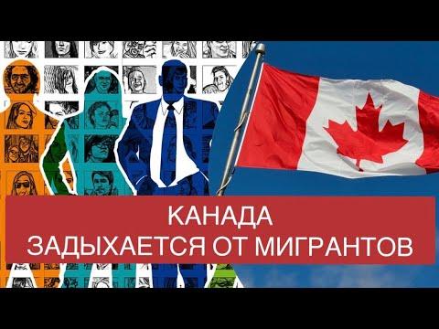 Бежать больше некуда! Канада задыхается от мигрантов. Реакция на комментарии хейтеров Канады