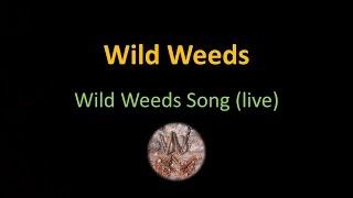 Wild Weeds Song (live)