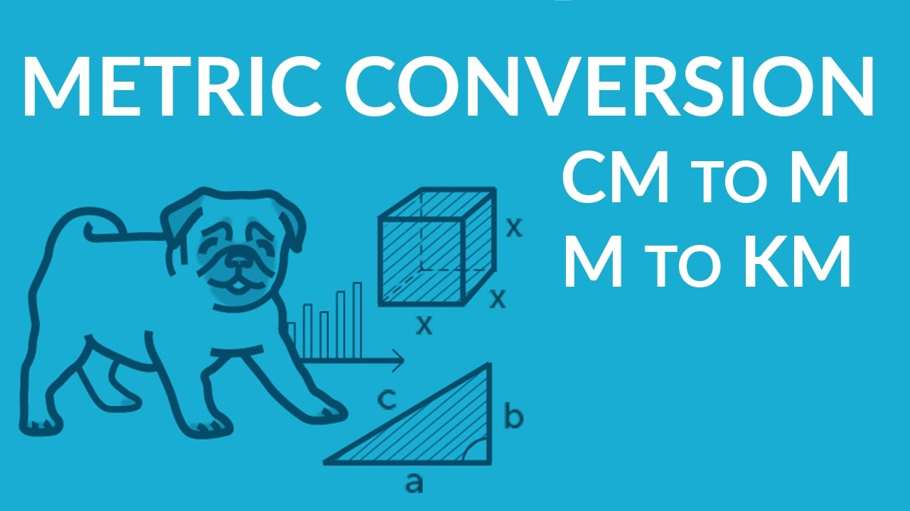 ʕ•ᴥ•ʔ Metric Units Conversion Basics: cm to m [ 720 x 1280 Pixel ]