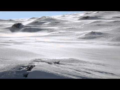 Antarctic Wind - 10 Hour Katabatic Wind Sounds for Sleep and Relaxation
