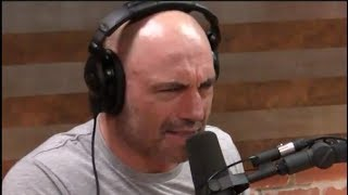 Joe Rogan's Morning Routine