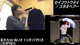 【045】「セイコウトウテイ」歌ってみた【あにま】