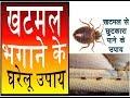 Khatmal marne ke gharelu upaye || खटमलों से छुटकारा कैसे पाए || खटमलों को आसानी से मरे Mp3