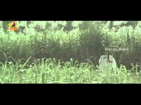 Seetharamaiah Gari Manavaralu Telugu Movie   Poosindi Poosindi Song   Meena   ANR