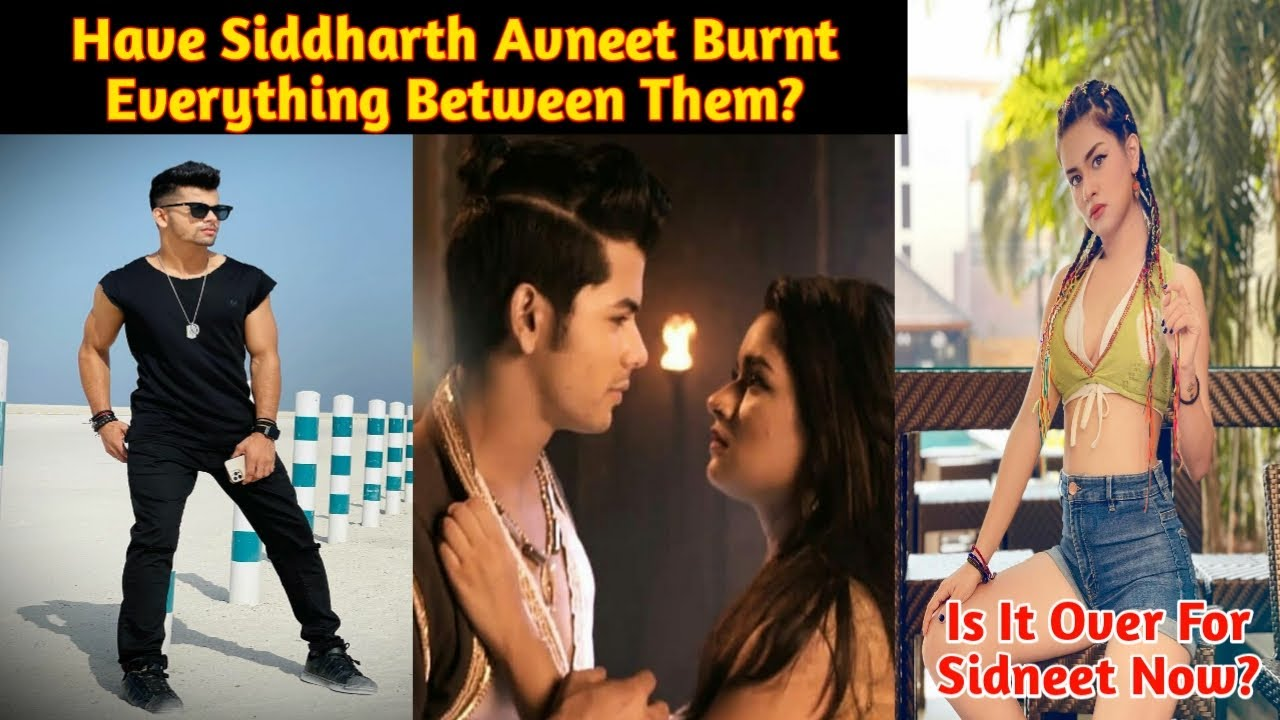 Download Have Siddharth Avneet Burnt Everything Between Them?| Is It Over For Sidneet Now| Sidneet Updates|