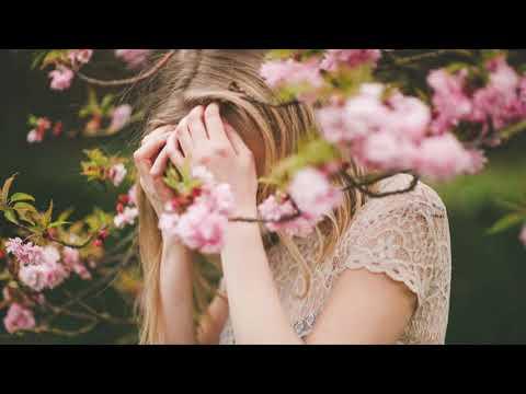 The Vamps - All Night (Alex Adair Remix)