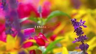 SET FREE - 15 sec love poem - 09/20/2013