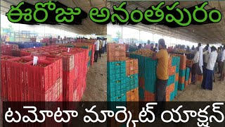 Today tamota market price/today Anantapur tamota market action/today Tomato market toppest rate 2020