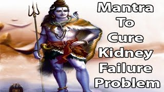 Mantra To Cure Kidney Failure Problem L Shree Shiva Mantra L À¤¶ À¤° À¤¶ À¤µ À¤® À¤¤ À¤° Youtube