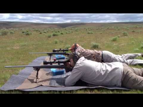 Browning X Bolt Long Range Hunter In 300wsm Funnycat Tv