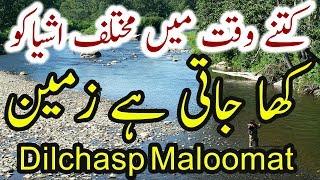Mukhtalif Cheezon Ko Zameen Ka Hisa Banne Mein Kitna Waqt Lagta Hai