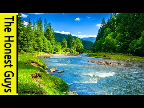 9 HOURS NATURE SOUNDS: RIVER IN THE SHIRE. Relaxation (NO MUSIC) Sleep, Study, Meditation