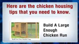 Chicken Housing Tips And Design To Build Coop For Keeping And Raising Chickens In Poultry