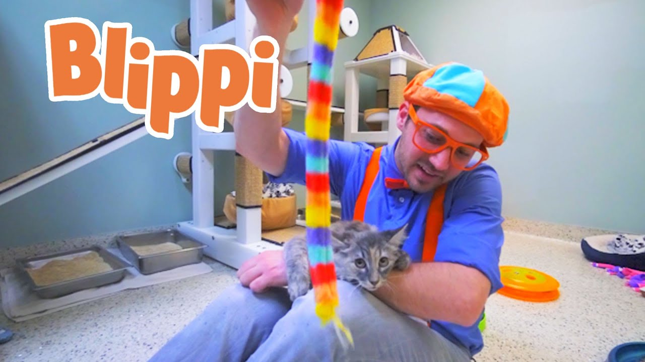 Blippi Learns About Animals For Kids | 1 Hour of Blippi | Educational Videos For Kids