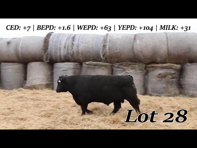 Sweiger Farms Lot  28