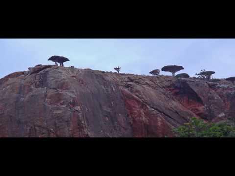 Gulf Cities - Socotra island