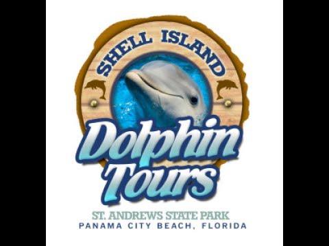 наша первая поездка за 4 года   shell island