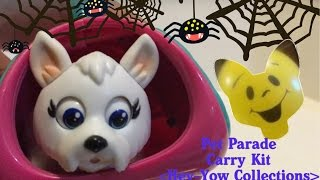 2016 Pet Parade Carry Kit Toy by Hey-Yow Collections