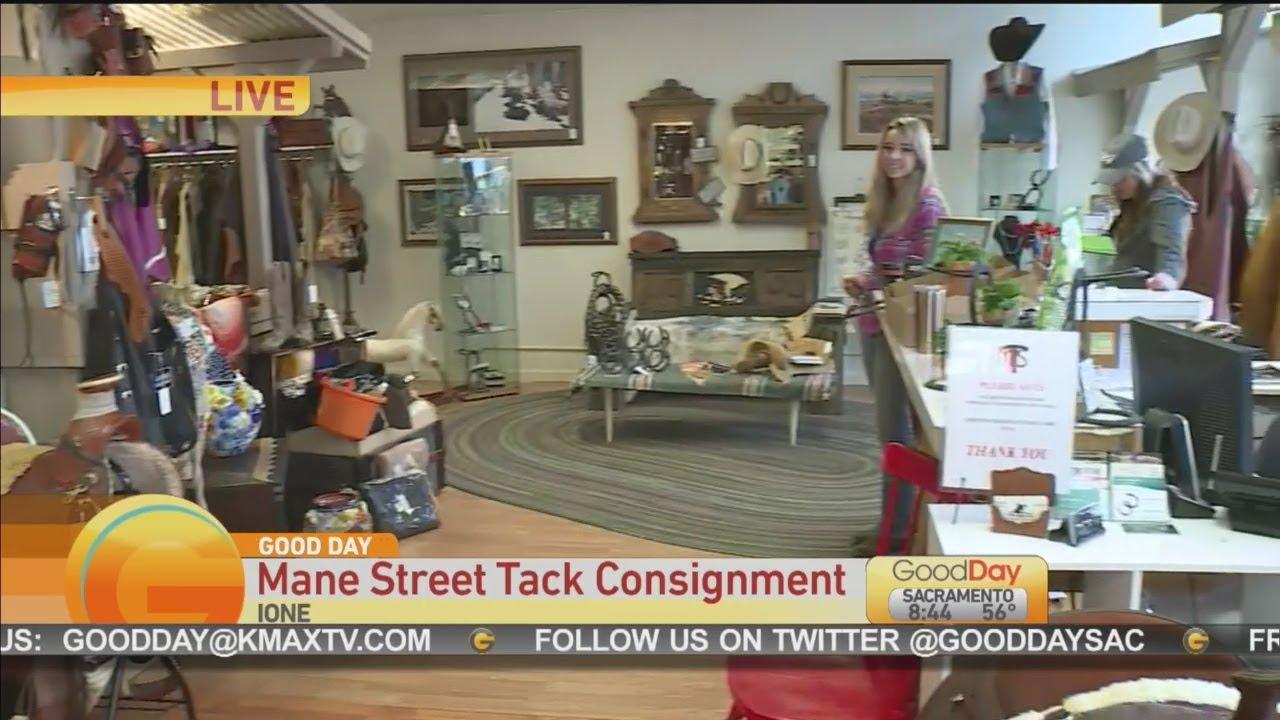 MANE STREET TACK - Mane Street Tack