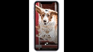 PetExec Mobile app: How to Request Other Services