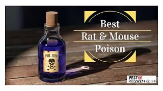 Best Rat & Mouse Poison