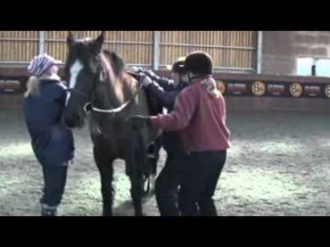 Roy Waller rides a horse for BBC Radio Norfolk