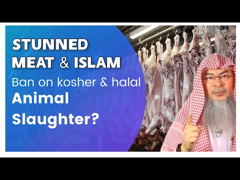 Ruling on Eating Stunned Meat, The Banning Of Halal And Kosher Animal Slaughter? assimalhakeem JAL