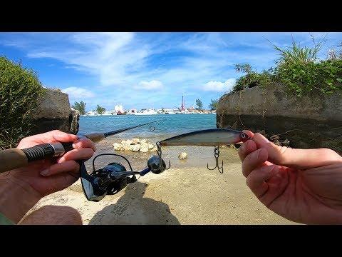 Touristy Urban Island Fishing Experience - Nassau Bahamas