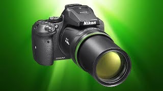 Can I Use a Nikon P900 for WILDLIFE Photography?