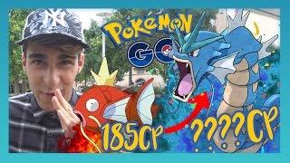 185 CP MAGIKARP EVOLUEREN NAAR GYARADOS! - Pokémon GO