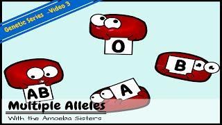 Plusieurs Allèles ABO (Types de Sang) et de Punnett Carrés