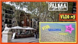 Ein TAG in PALMA #5 VIVA Mallorca im November I Daily Motivation