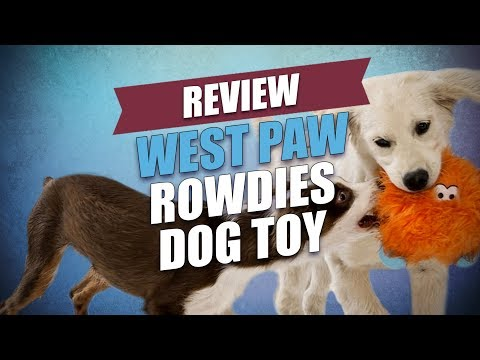 west-paw-rowdies-dog-toy-review