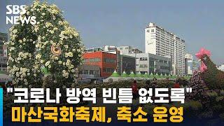 """""""코로나 방역 빈틈 없도록""""…마산국화축제, 축소 운영 / SBS"""