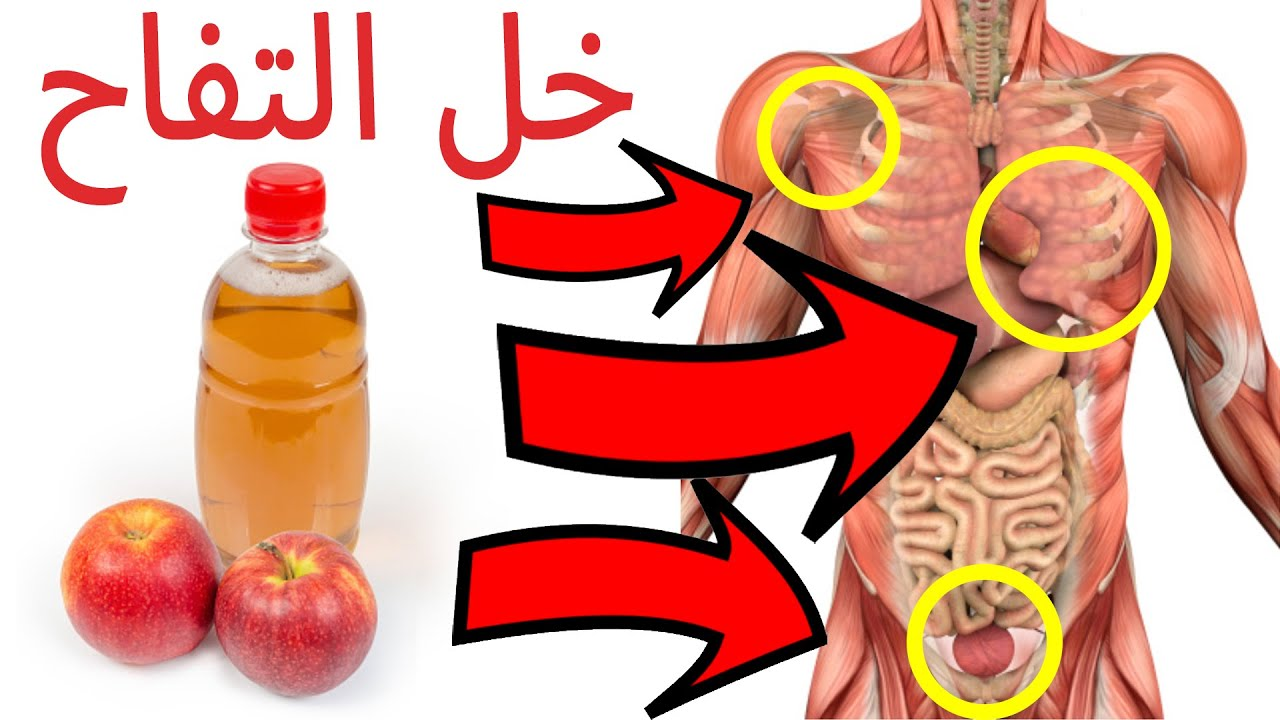 لن تصدق ماذا سيحدث لك عند شرب خل التفاح يوميا فوائد خل التفاح للجسم Youtube