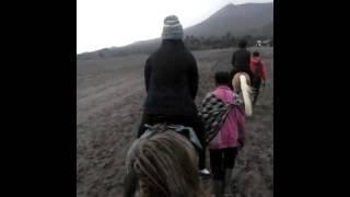 Video Naik kuda download MP3, 3GP, MP4, WEBM, AVI, FLV Desember 2017