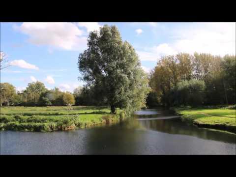 Wildlife Film by Ben, 12