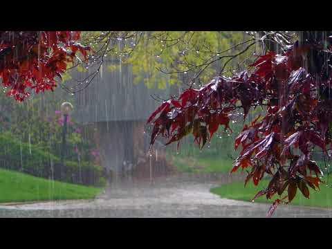 Дождь, гром, гроза